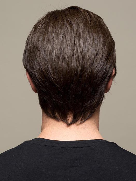 Brad   Blonde Gray Synthetic Men's Straight Wigs - wigglytuff.net
